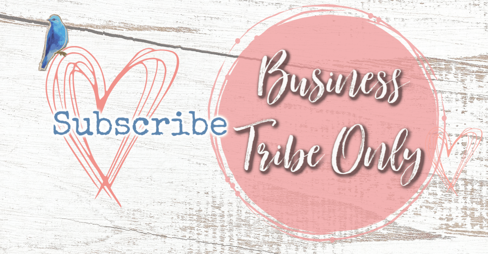 Paypal Button Business Tribe Only