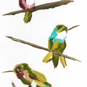 Hummingbird Trio; Hummingbird Art Print