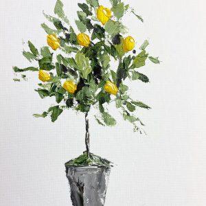 Little Lemon Tree: A Self Study Studio Session