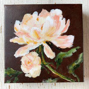 Peony Peach; Original Floral Painting